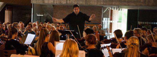 Wie funktioniert ein Orchester?